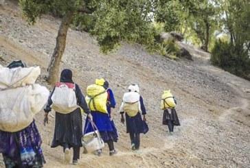 توسعه روستایی ، فرصت ها ، چالش ها ، راه کارها